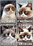 ATA-BOY Grumpy Cat Magnet (4-Pack)