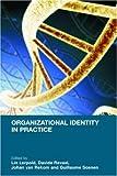 Organizational Identity in Practice, , 0415398401