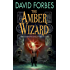 The Amber Wizard: Book One of The Osserian Saga