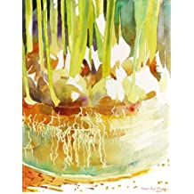 Rooting Tulip Bulbs, Giclee Print of a Still Life Watercolor Painting, Picture of Plant Roots in a Glass Vase, 10 X 13 Inches