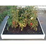 "Handy Bed 4 x 4 Stack-able, White, Vinyl, Raised Garden Bed 10 Actual Dimensions: Outer (47.25"" x 47.25"" x 6.00"") Inner (45.00"" x 45.00"" x 6.00"") Stack-able, Relocatable, Paint-able Simple design makes assembly easy"