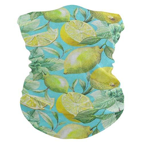 (Colored Tea Leaf Lemon Fruit Headband Womens Bandana Mens Balaclava,Neck Warmer,Face Mask,Neckerchief Headwrap)