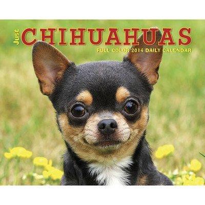 UPC 709786026524, Just Chihuahuas 2014 Box Calendar