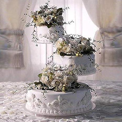 Amazon Com 3 Tier Acrylic Wedding Cake Stand Style R300 Cake