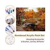 FORWIN US Puzzle House Paint by Numbers Kits for Kids Adults Beginner Teens Pine Framed DIY Oil Acrylic Painting Paint Sets, The Autumn Bridge Park 511 (Color : with Pine Frame, Size : 600mm x 750mm)