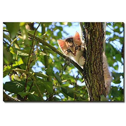 Best Oil Paintings Canvas Prints Cat Trees - YQ Park Wall Art Painting Cat