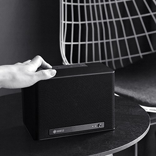 Raumfeld One S Wireless Streaming Speaker (Black)