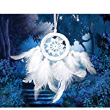 Tanke Dream Catcher Handmade Traditional Feather Wall Hanging Home Decoration Decor Ornament Craft