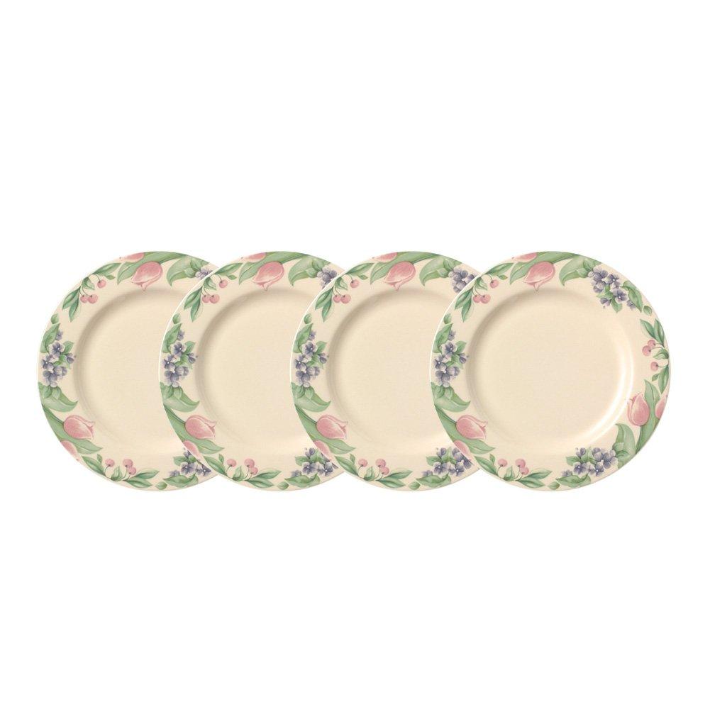 Pfaltzgraff Garden Party Dinner Plate (10-1/2-Inch, Set of 4)