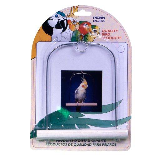 Penn Plax Cockatiel Bird (Penn Plax Swing)