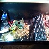 Amazon Com Zoo Med Turtle Tub 13 Gallon Turtle Tank