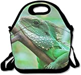 Perfect Gifts - Mint Green Snake Lunch Bags Insulated Travel Picnic Lunchbox Tote Handbag With Zipper Carry Handle Shoulder Strap For Women Teens Girls Kids Adults