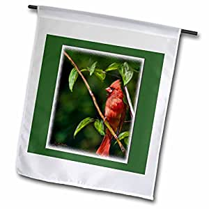 777images Digital Paintings Wildlife - Red Cardinal in a tree Digital Oil Painting - 18 x 27 inch Garden Flag (fl_20531_2)