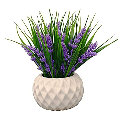 VGIA Modern Artificial Potted Plant for Home Decor Lavender Flowers and Grass Arrangements Tabletop Decoration - The artificial plants in this display look lovely in ceramic vase Surprise someone you love with this unusual gift, mum, sister or just someone having a housewarming - a special gift, a present on Mother's day or a teachers gift Home accessories full of colour and style. Cute little flower arrangements in vases - ideal small ornaments for the living room, bathroom accessories or window ornaments - living-room-decor, living-room, home-decor - 51Memm9V RL. SS400  -