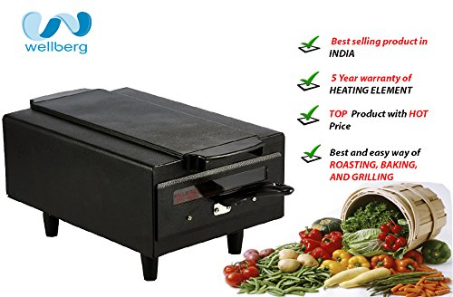 WELLBERG MINI Electric Tandoor