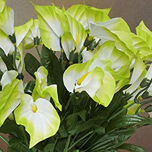 252 Mini Silk Calla Lilies Flowers Bushes for Wedding Bouquets Centerpieces (Lime Green) 101