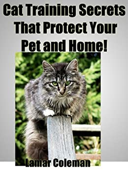 Cat Training Secrets That Protect Your Pet and Home!