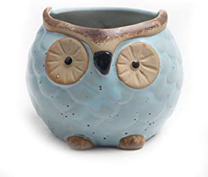 Gokeop 2-Inch Ceramic Flowers Pot, Cartoon Pattern of Owls Planter for Home Cafe Garden Pot, Indoor Decoration for Succulent Plants Flowers Seeds Container,7×7×6cm Blue