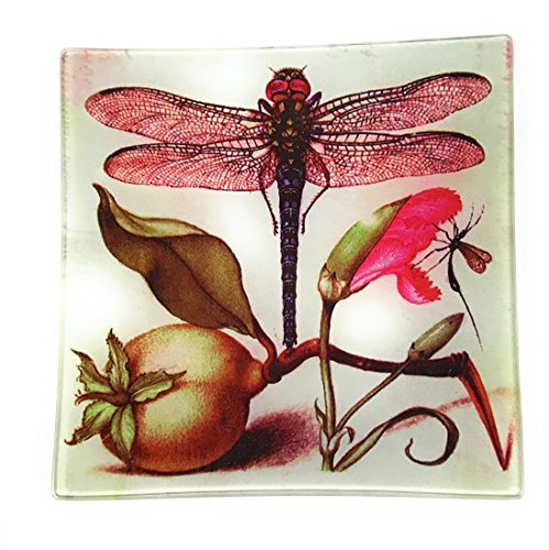 Dragonfly Tray - Value Arts Red Dragonfly Glass Decor Dish Tray, 5.75 Inches Square, Coin Soap Catchall Keys