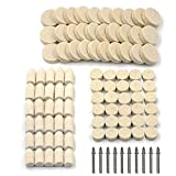 100Pcs Wool Felt Polishing Pad & Polishing Wheel, Kicpot Point & Mandrel Kit for Dremel Rotary Tools (100Pcs)