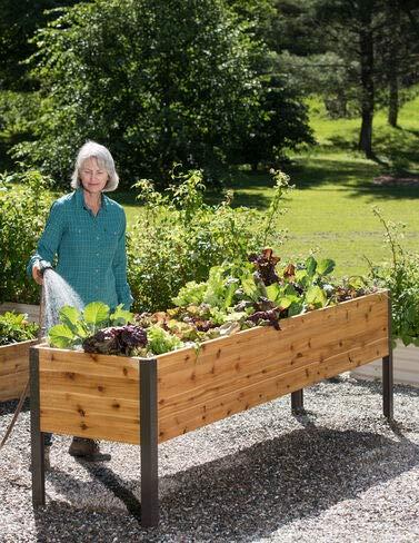 Gardener#039s Supply 2 Ft x 8 Ft Raised Garden Bed Elevated Cedar Planter Box Standing Garden 24quot x 96quot