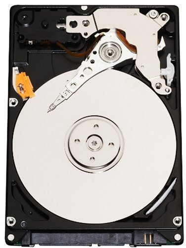 Western Digital 250 GB Scorpio Blue SATA 5400 RPM 8 MB Cache Bulk/OEM Notebook Hard Drive WD2500BEVS