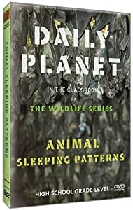 Daily Planet in the Classroom Wildlife: Animal Sleeping Patterns