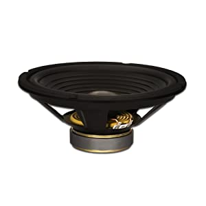 "Goldwood Sound GW-210/8 OEM 10"" Woofer 220 Watts 8ohm Replacement Speaker"