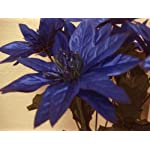 4-Bushes-NAVY-BLUE-Christmas-Glitters-Poinsettia-Artificial-Silk-Flower-12-Bouquet-4-2209-NBL