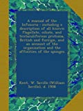 img - for A manual of the Infusoria : including a description of all known flagellate, ciliate, and tentaculiferous protozoa, British and foreign, and an ... and the affinities of the sponges book / textbook / text book