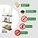 Asliny - Hanging Shelf Wall - Floating Swing