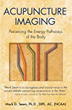 Acupuncture Imaging: Perceiving the Energy Pathways of the Body