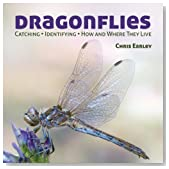Dragonflies: Catching - Identifying - How and Where They Live