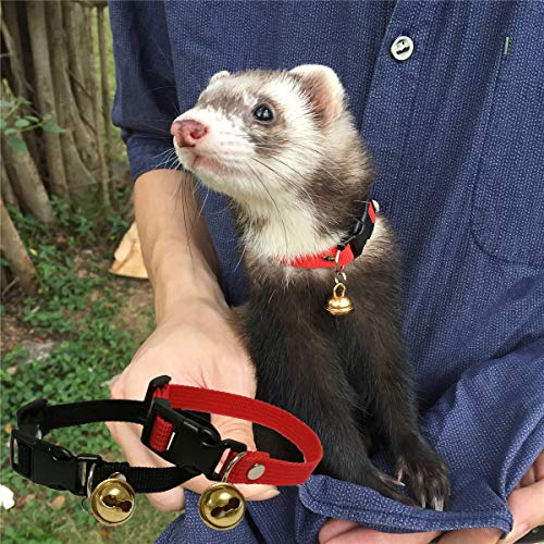Margelo Pet Classic Solid Color Ferret Collar with Bell - Adjustable