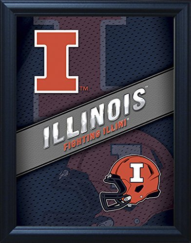 """Illinois Fighting Illini 3D Poster Wall Art Decor Framed 