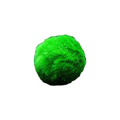 Liamostee Marimo Moss Ball Camarones Jugando Algas Crecimiento Planta Acuario pecera Paisaje decoración