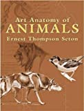 Art Anatomy of Animals (Dover Anatomy for Artists)