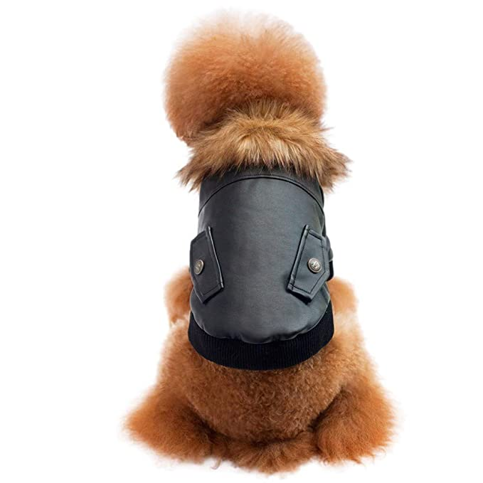 Ropa para Mascotas,Dragon868 Invierno Caliente Mascotas Perros Capa Gruesa con collers Chaqueta de Cuero: Amazon.es: Ropa y accesorios