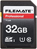 Wintec Filemate 32 GB Professional Class 10 Secure Digital SDHC Card