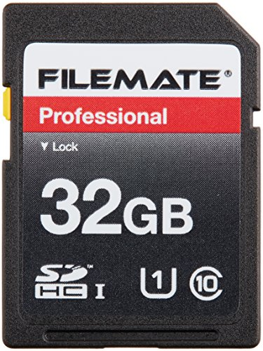 Wintec 3FMSD32GBC10-R Filemate 32 GB Professional Class 10 Secure Digital SDHC Card