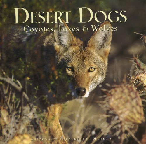 Desert Dogs: Coyotes, Foxes & Wolves