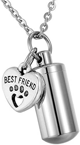 Pet Ashes Urn Jewellery Paws Heart Cremation Keepsake Necklace Pendant Jewelry
