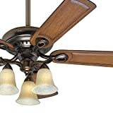Hunter Fan 52″ Bronze Patina Ceiling Fan with Tea Stained Glass Light Kit, 5 Blade (Certified Refurbished) Review