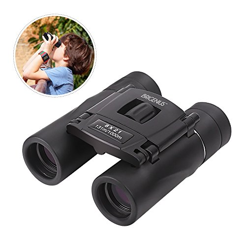 8x21 Mini Lightweight Binocular for Opera Concert, Compact Small Pocket Binoculars Foldable for Kids Adault Birdwatching Safari Sightseeing(0.4lb)