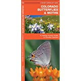 Colorado Butterflies & Moths: A Folding Pocket Guide to Familiar Species (Pocket Naturalist Guide Series)