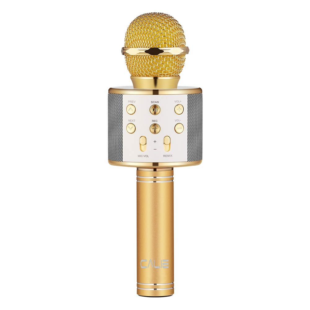Calie Wireless Karaoke Microphone with Bluetooth Speaker for iPhone Android Smartphone, Portable Handheld Microphone for Singing Recording Interviews Home KTV Party (silver) 4336349515