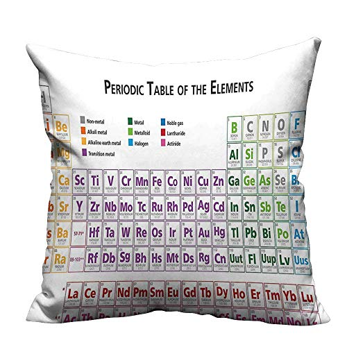 YouXianHome Decorative Throw Pillow Case Primary School Students Geek Nerd Lessons Classes Smart Kids Art Print Ideal Decoration(Double-Sided Printing) 35x35 inch ()