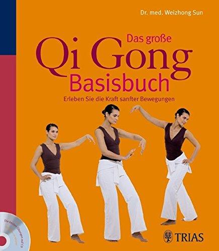 Das große Qi Gong Basisbuch: Erleben Sie die Kraft sanfter Bewegungen