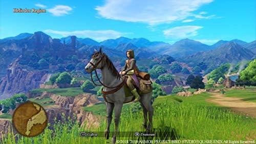 Dragon Quest XI: Ecos de un Pasado Perdido: Amazon.es: Videojuegos