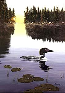 """Toland Home Garden 1010422 First Light Loon Decorative Birds/Outdoors House Yard Flag, 28"""" by 40"""""""
